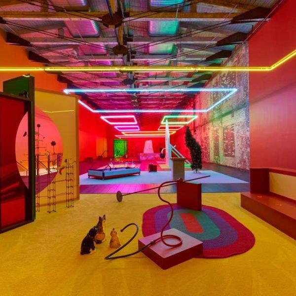 Alexa da Corte interior design with cats