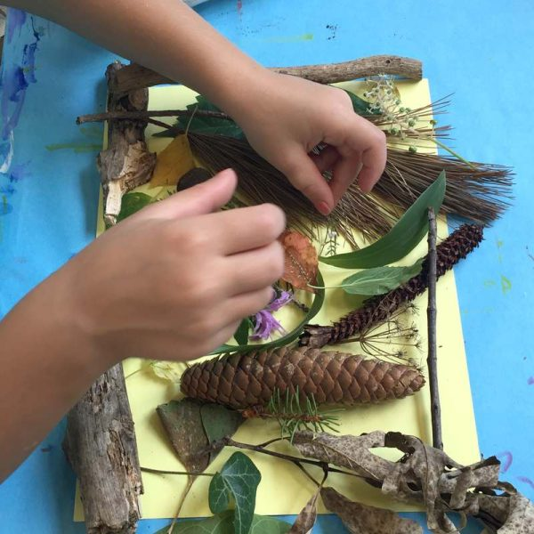 leaves, wood, and pine cones on a table