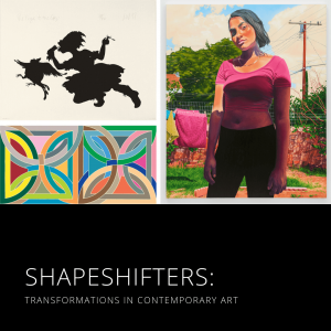 Shapeshifters Contemporary Art Exhibition